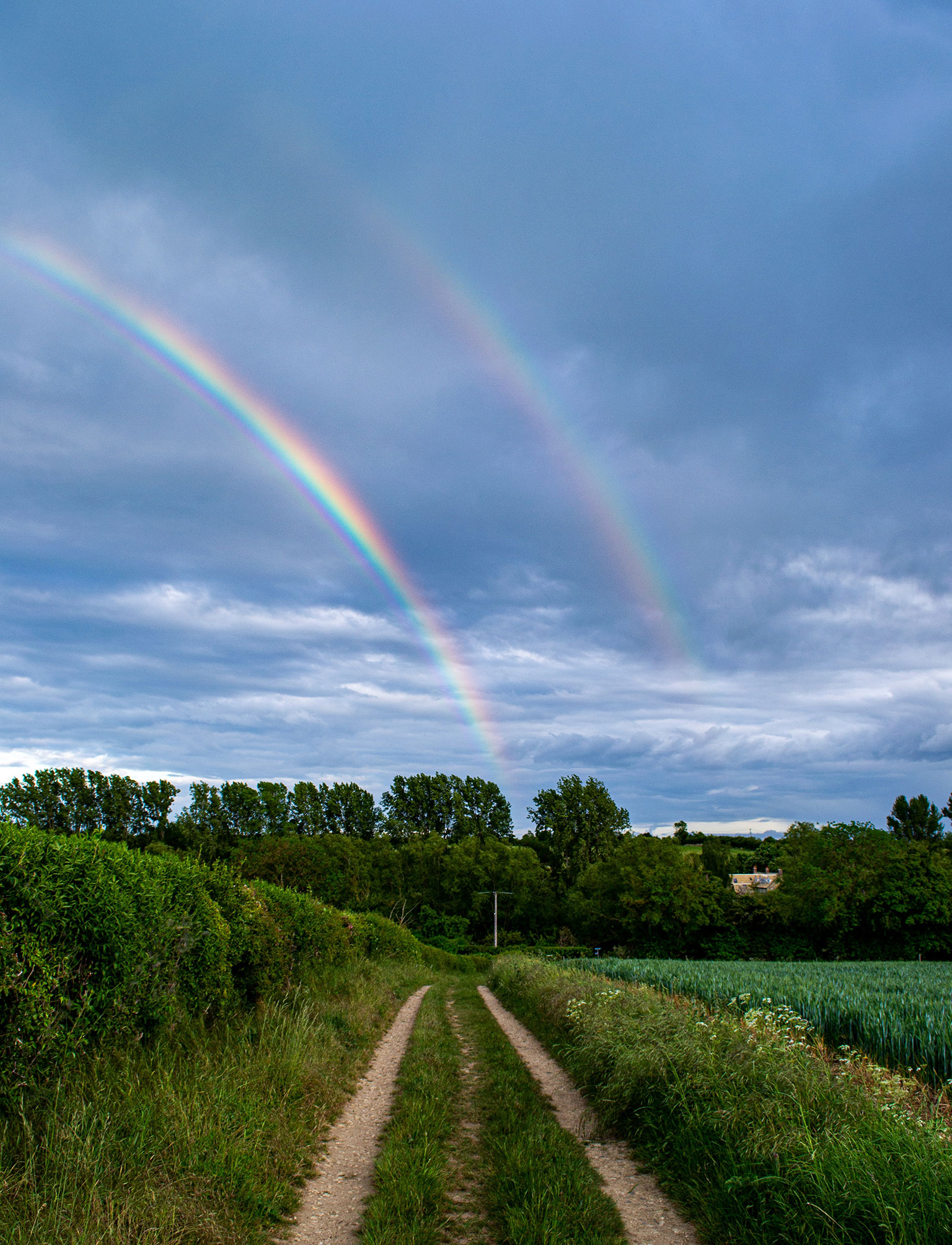 Land-with-rainbow-image